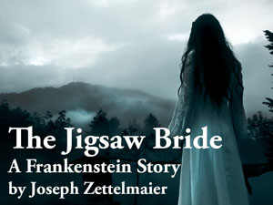 Jigsaw Bride Logo. A woman with long dark hair wearing a flowing white dress looks out over a foggy dark forest.